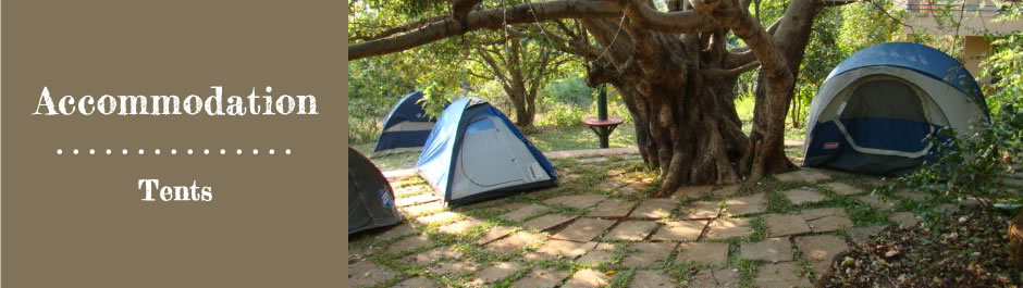 Accommodation - Tents